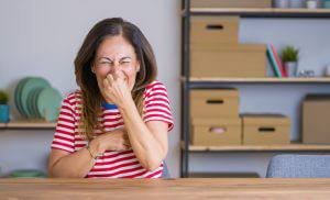 Getting Rid of Bad Smells in the Home